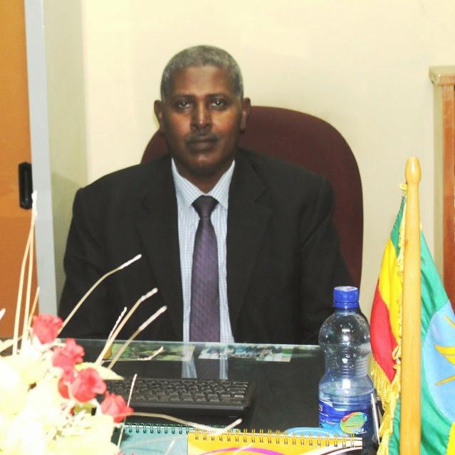 Alemayehu Teferi - Senior DDIA Advisor